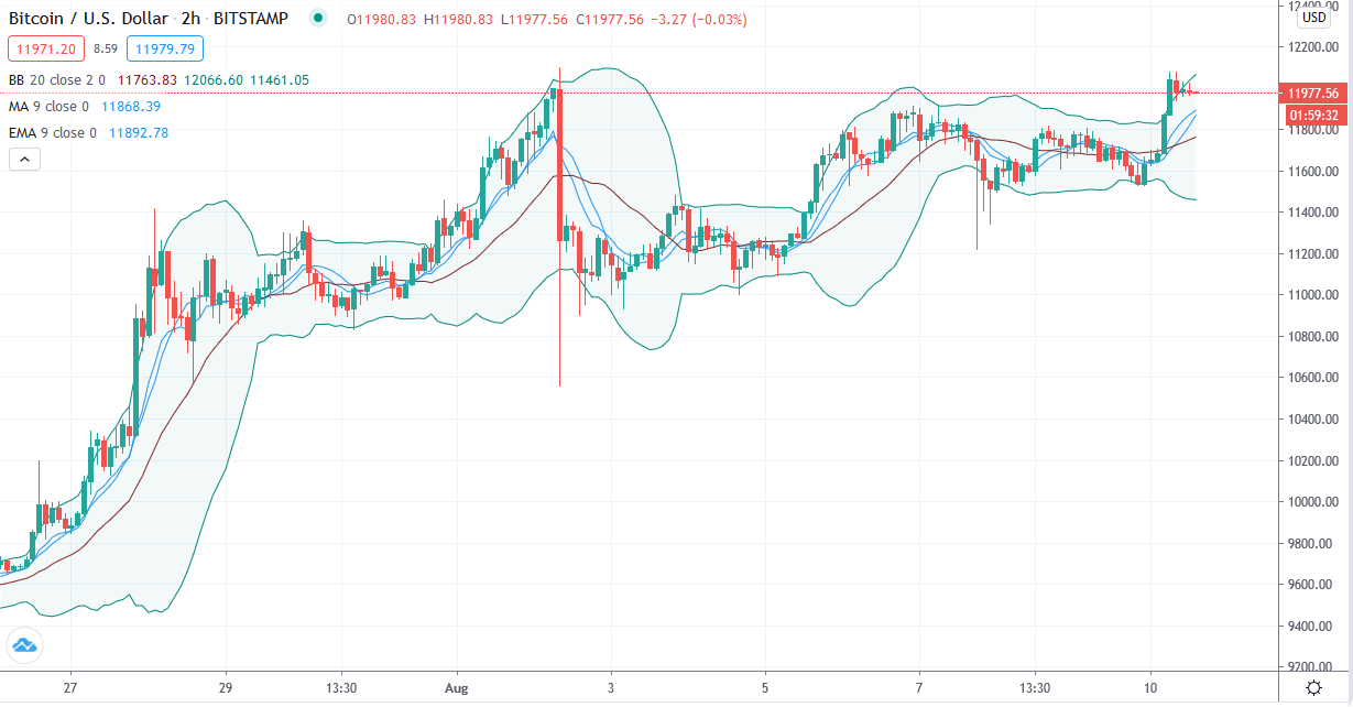 Bitcoin price chart by TradingView