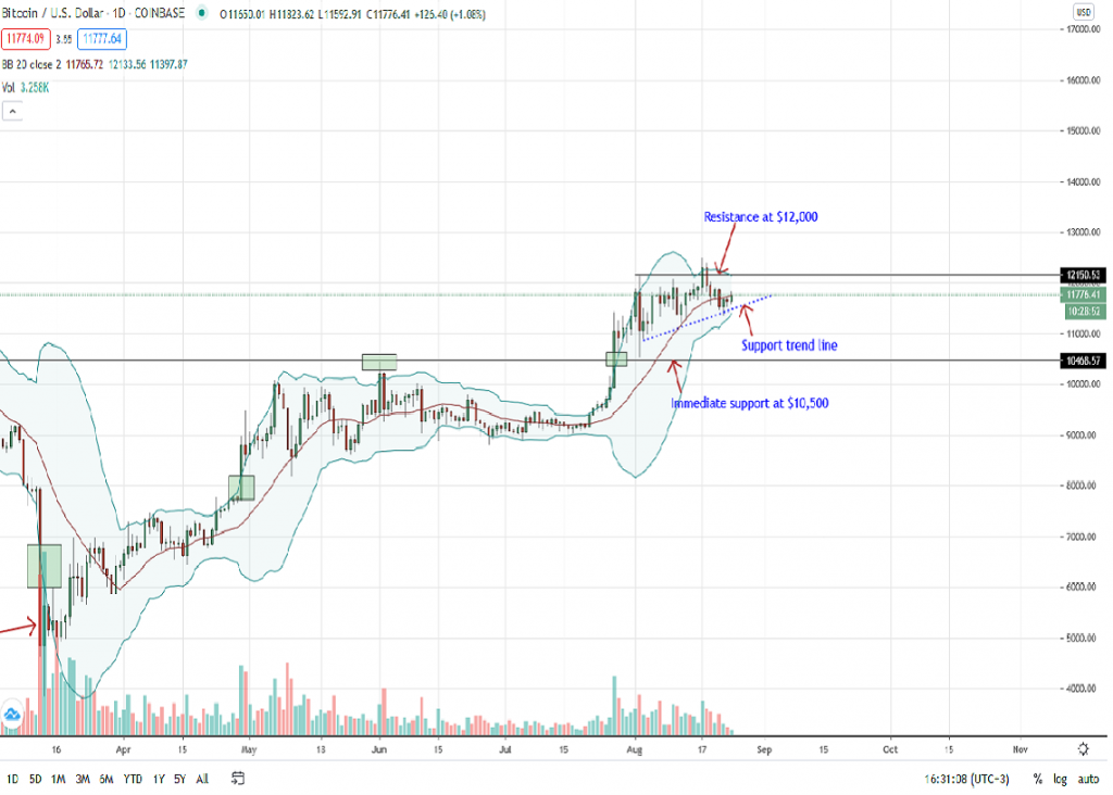 Bitcoin Price Daily Chart for Aug 24