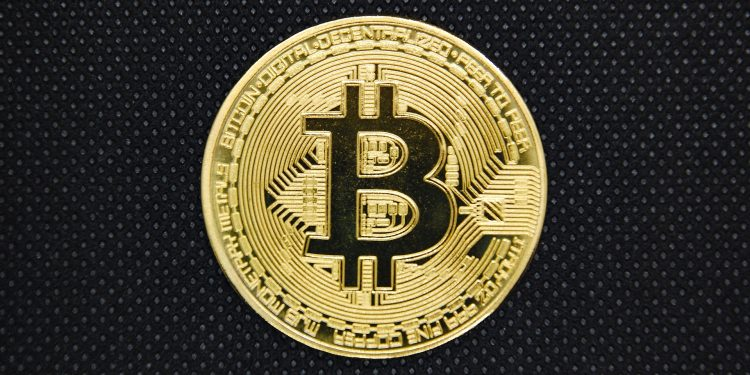 3.5 Million Bitcoin Wallet Downloaded, How To Earn Profit With BTC Wallet 1