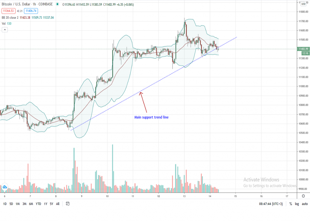 Bitcoin Price 1-Hour Chart by Trading View