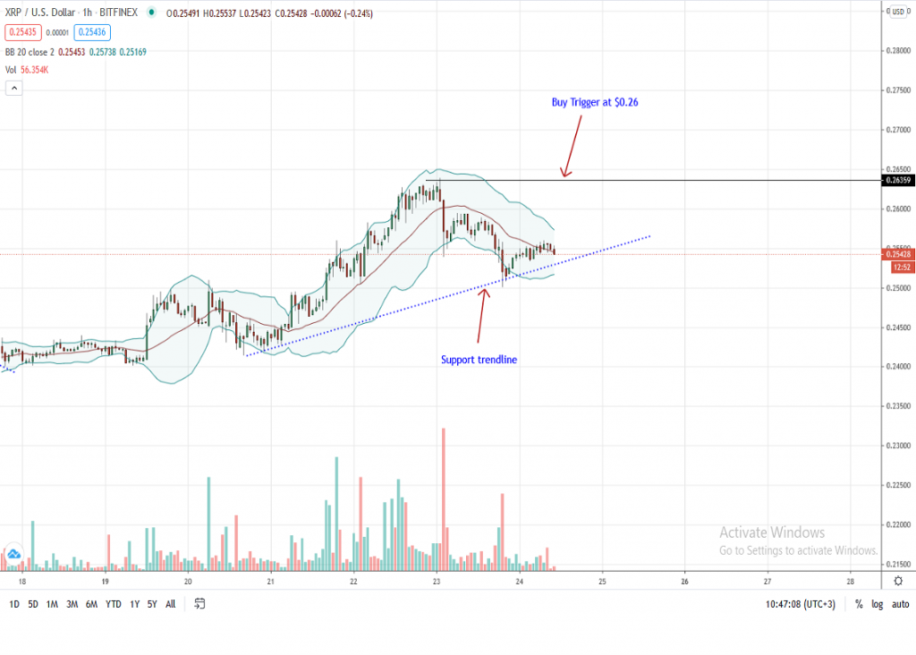 Ripple 1-Hour Price Chart by Trading View