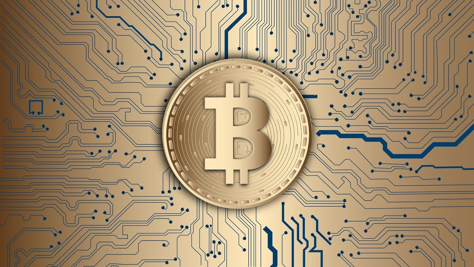 5 Reasons Why eCommerce Stores Should Accept Bitcoin Payments