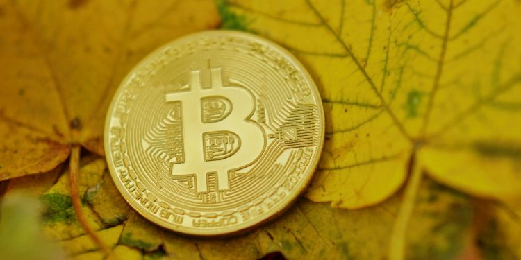 BTC is not Equivalent to Fiat Yet 1