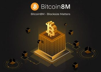 Can a Bigger Block Size Solve Bitcoin's Scalability Issues? Miners See a Vast Potential with Bitcoin8M 6