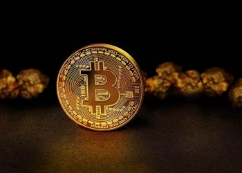 Bitcoin Trade- What Beginners Should Do In 2021? 12