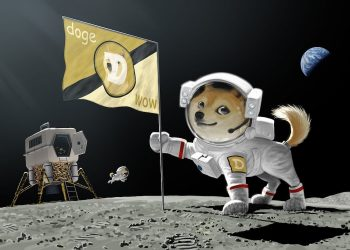 Dogecoin payment