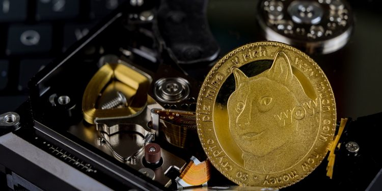 Dogecoin price analysis Will Doge be the darling of speculators in June