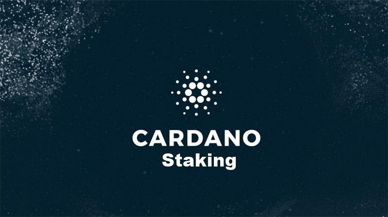 Cardano Staking: What are the benefits?   Cryptopolitan