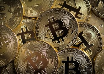 Bitcoin again recovered to $50,000 after the price fall of 17% due to Elon Musk's Tweet 7