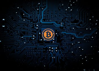 Why Should You Invest In Bitcoin In 2021 Despite The Volatility? 6