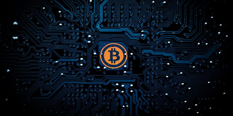 Why Should You Invest In Bitcoin In 2021 Despite The Volatility? 1