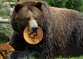 A Smarter Way to Hodl and Grow Wealth In A Bear Market 6