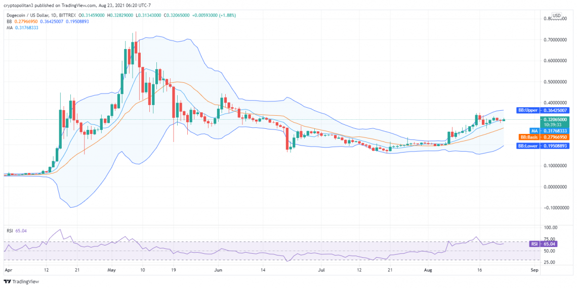 Dogecoin price analysis: Bears all set to pull DOGE below $0.32 1