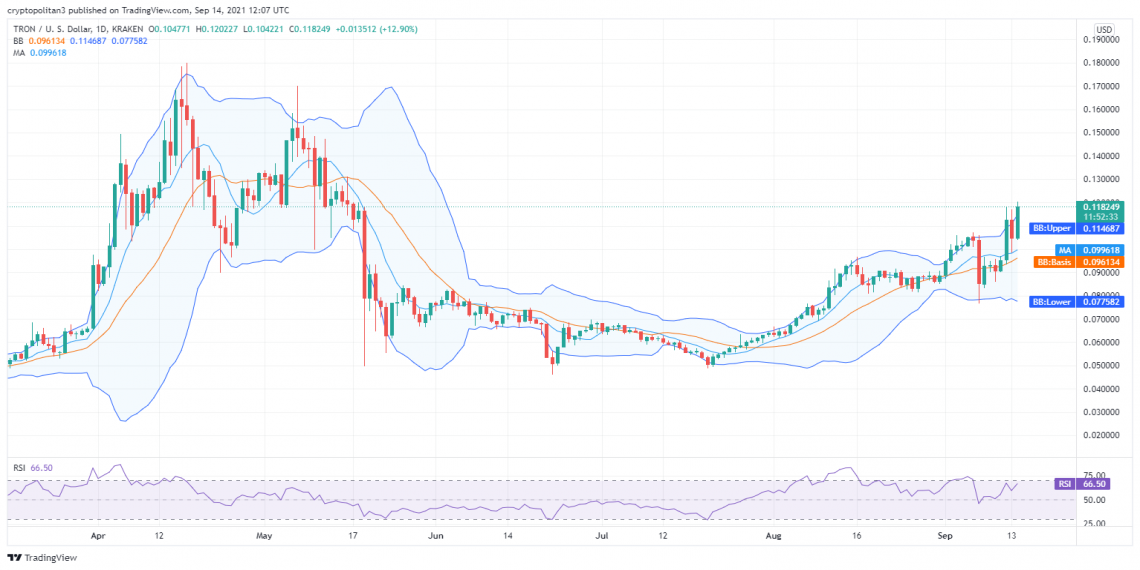 TRON price analysis: Tron under pressure as TRX/USD descends to $0.12 1