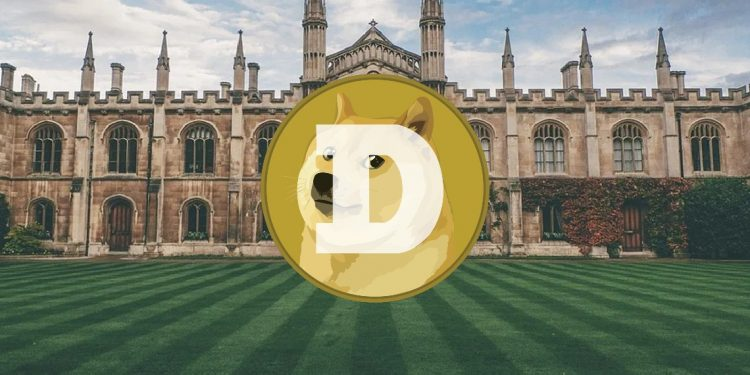 Dogecoin price analysis: DOGE price rallies to $0.254 as bulls dominate the market